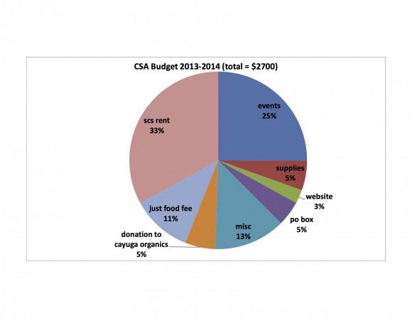 csa_budget_2013