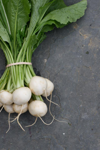 Japanese Salad Turnips