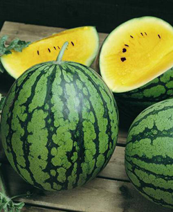 GEOF-Yellow Baby Watermelon
