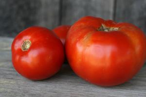 GEOF-tomatoes