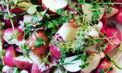 organic vegetables CSA